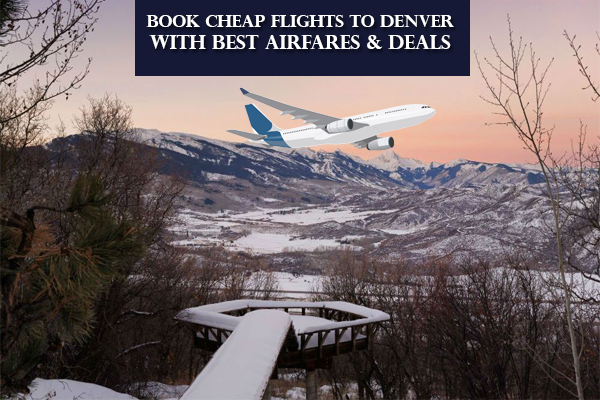 Best Travel Guide When You Plan For Tour To Denver Book