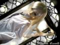 [SD][人形][健][Volks][doll]SD 健