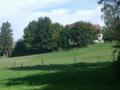 Grünlandschaft