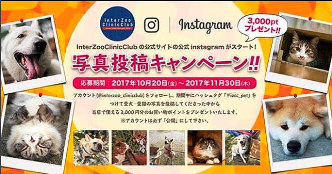 f:id:luna-an-jp:20171218213826p:plain