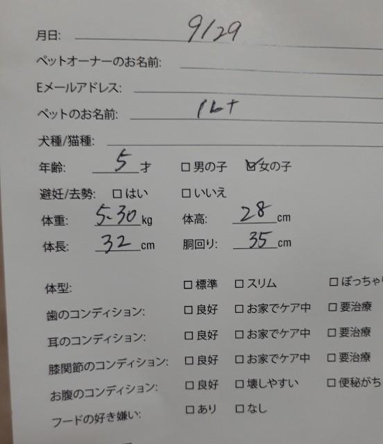 f:id:luna-an-jp:20180929214010j:image