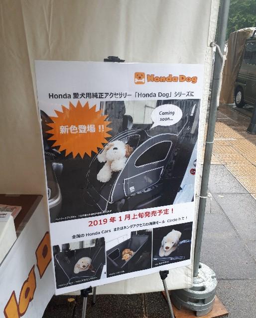 f:id:luna-an-jp:20180929214507j:image