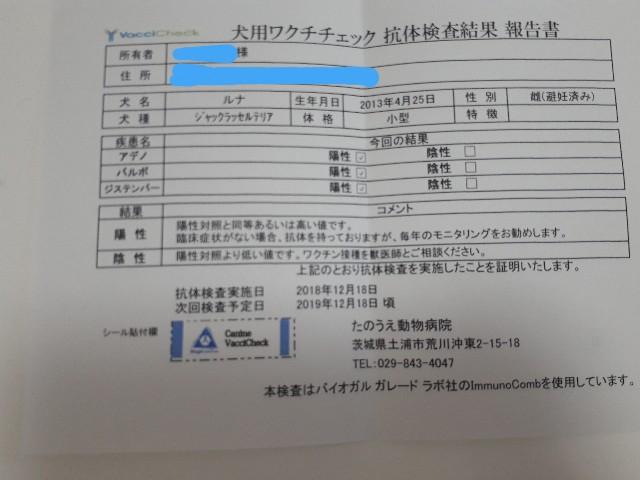 f:id:luna-an-jp:20181219144255j:image
