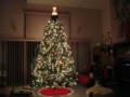 [Christmas][Tree]