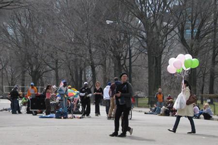 [Central Park][Spring]