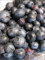 [Blueberries][ブルーベリー]