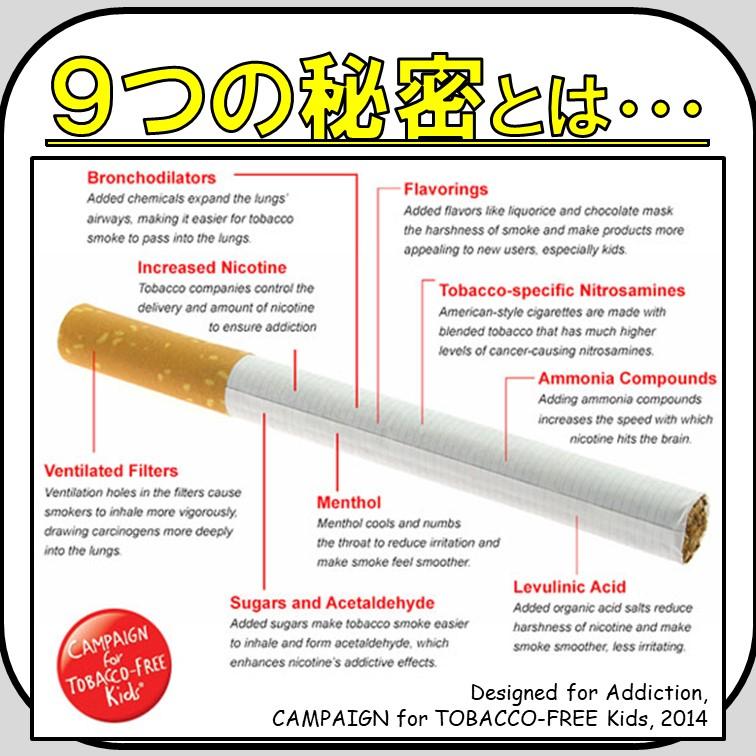 肺癌, 肺癌勉強会, 禁煙, 肺癌リスク, タバコ, 喫煙