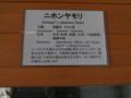 CIMG9980.JPG