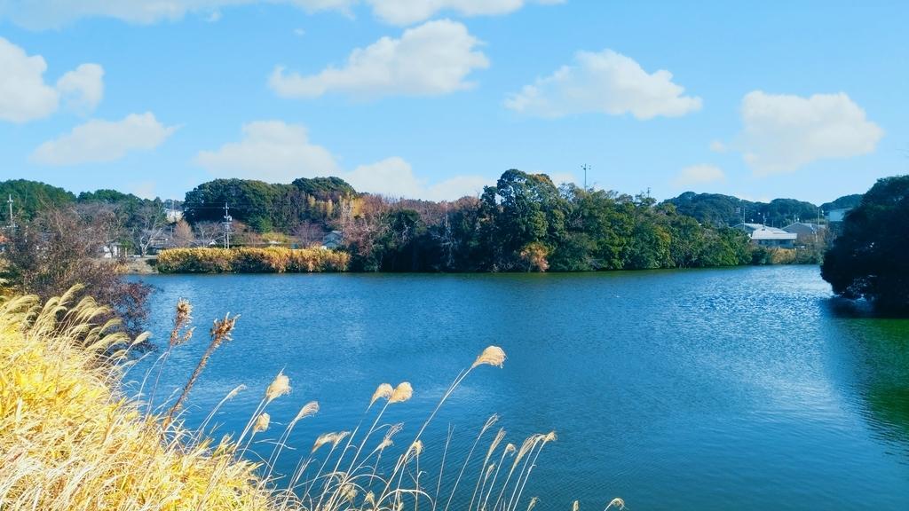 京徳池公園