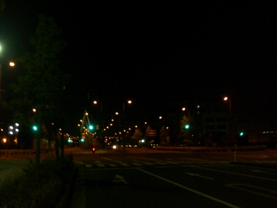 橋から見る夜景が綺麗