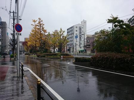 道路が鏡なくらい、雨。