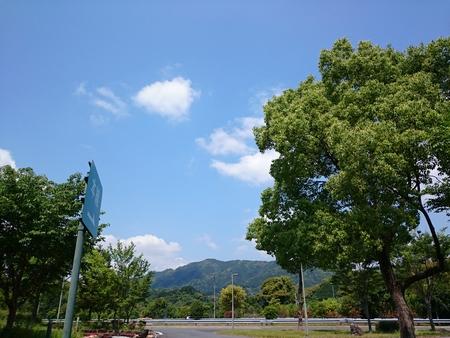 良い天気じゃのー