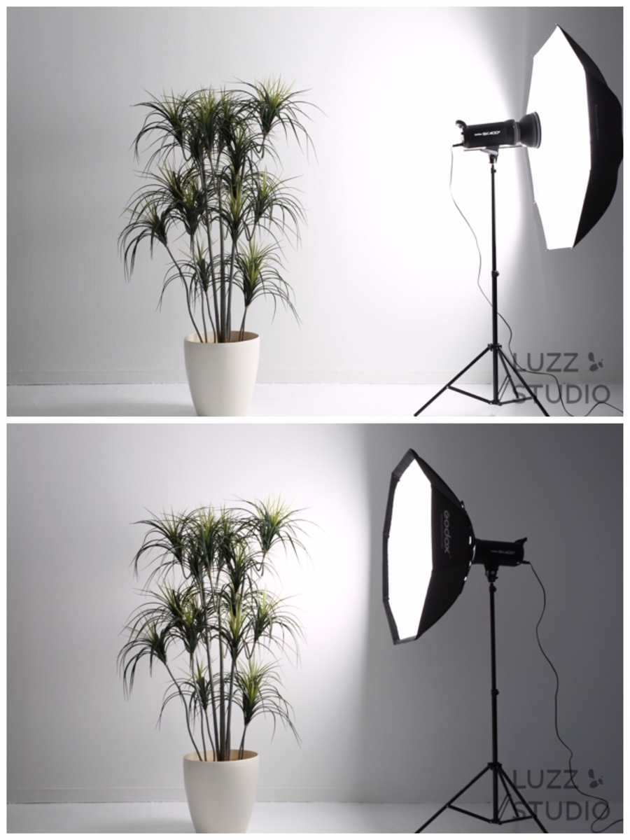 アンブレラとソフトボックスの光の届き方の違いの写真