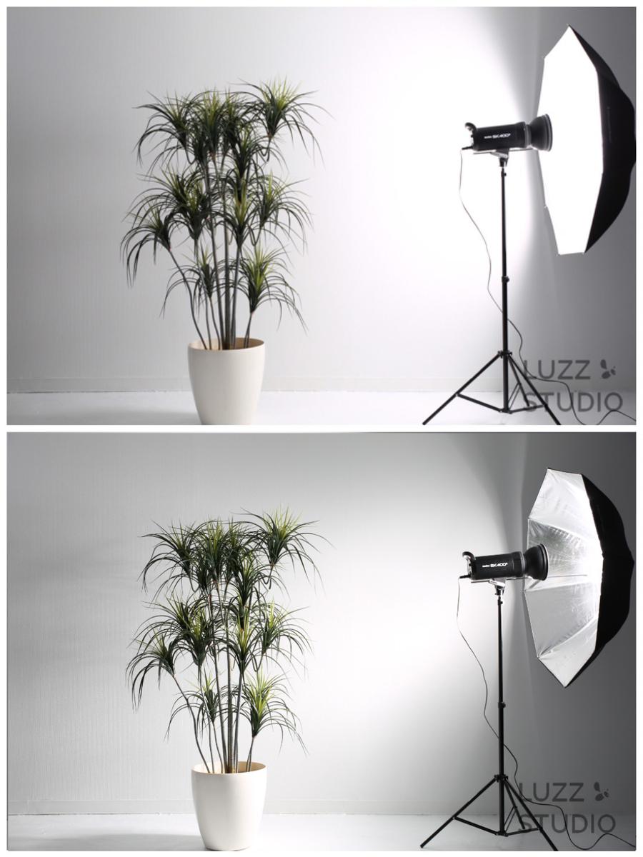 ホワイトアンブレラとシルバーアンブレラの光の広がり方の比較写真
