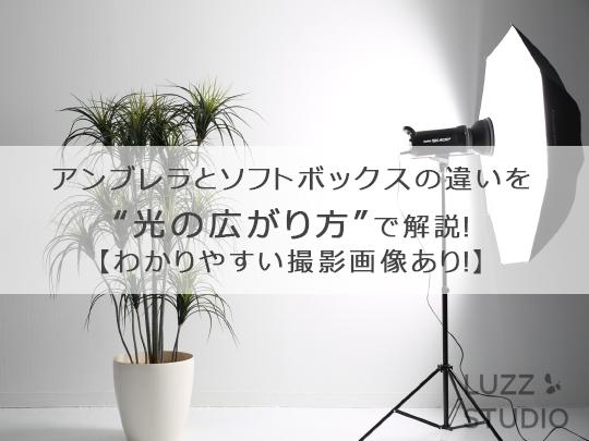 f:id:luzzstudio:20200126152037j:plain