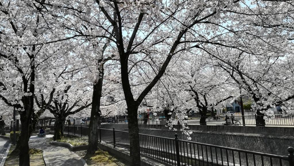 f:id:m-eitaro:20180328150907j:plain