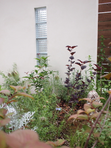 f:id:m-garden-life:20150609173255j:plain