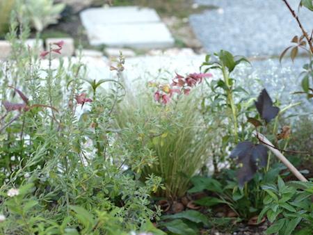 f:id:m-garden-life:20151007171624j:plain
