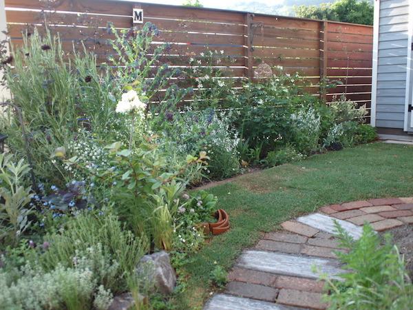 f:id:m-garden-life:20160504070044j:plain