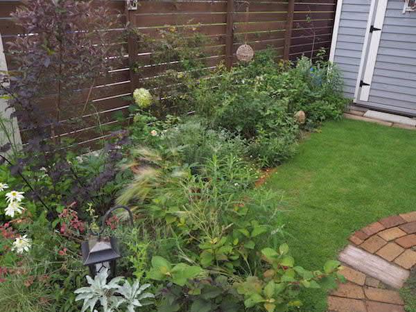 f:id:m-garden-life:20160625082009j:plain
