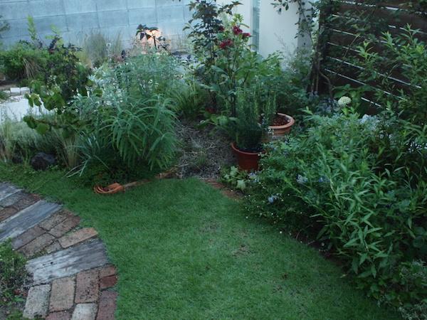 f:id:m-garden-life:20160723192849j:plain