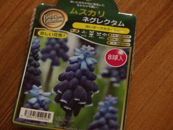 f:id:m-garden-life:20160922153117j:plain