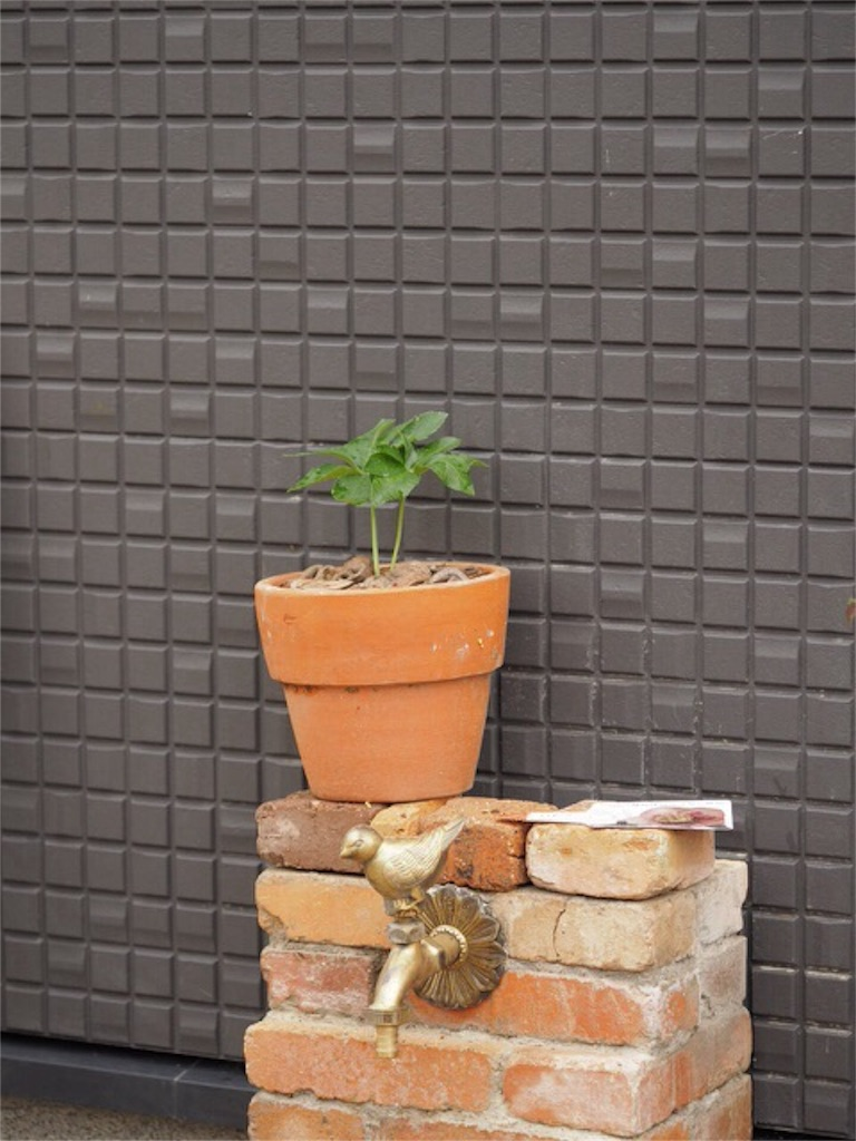 f:id:m-garden-life:20161002105157j:plain