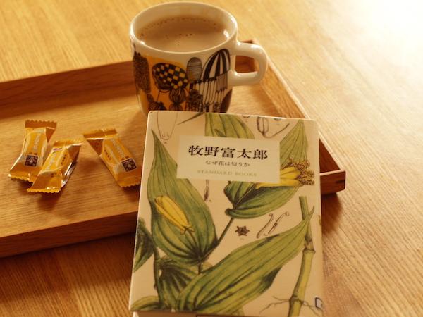 f:id:m-garden-life:20161012105329j:plain