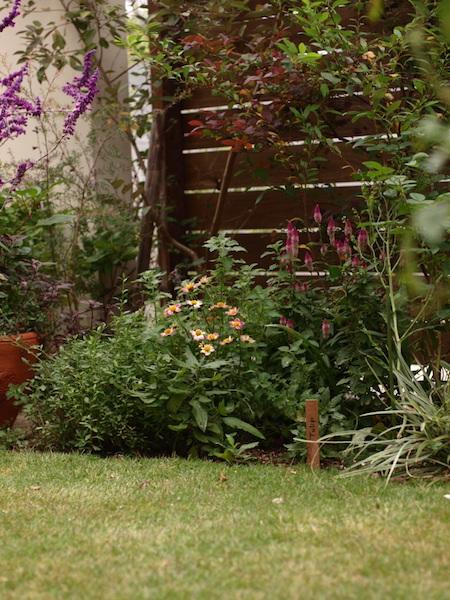 f:id:m-garden-life:20161021161943j:plain