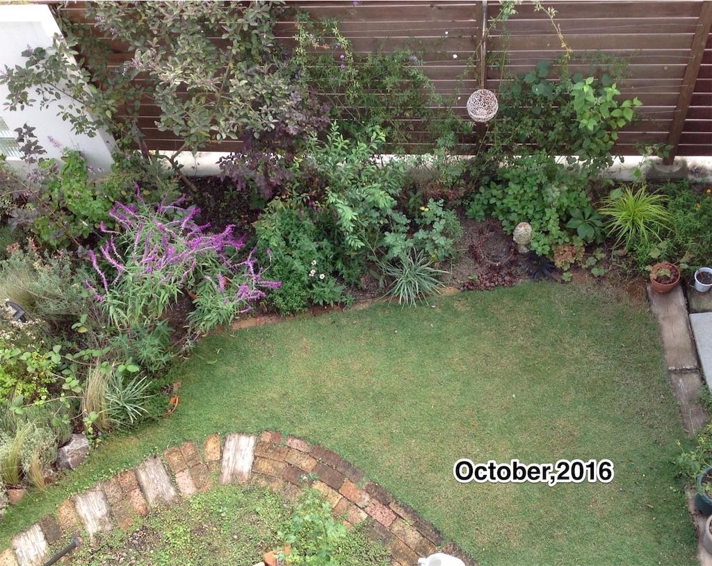 f:id:m-garden-life:20161029162737j:image
