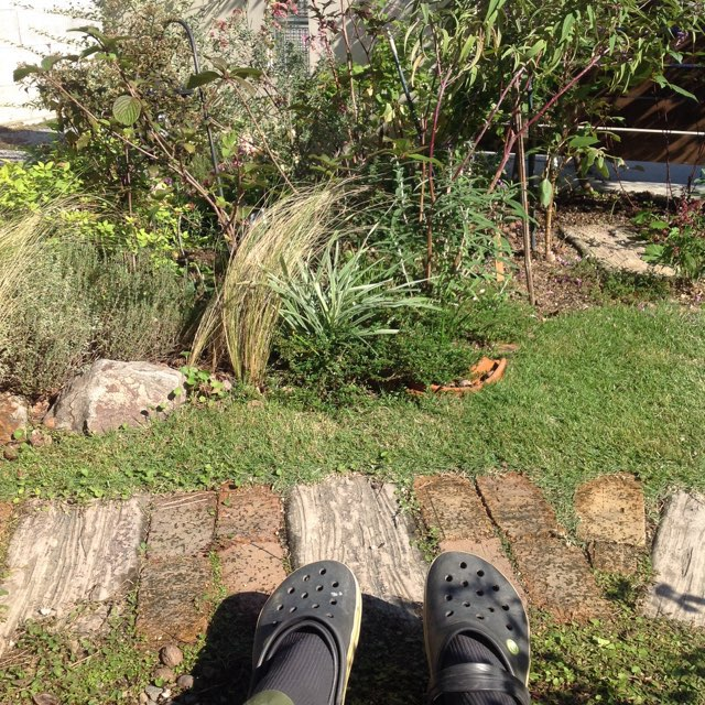 f:id:m-garden-life:20161102130619j:plain