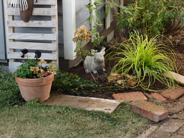 f:id:m-garden-life:20161124160323j:plain