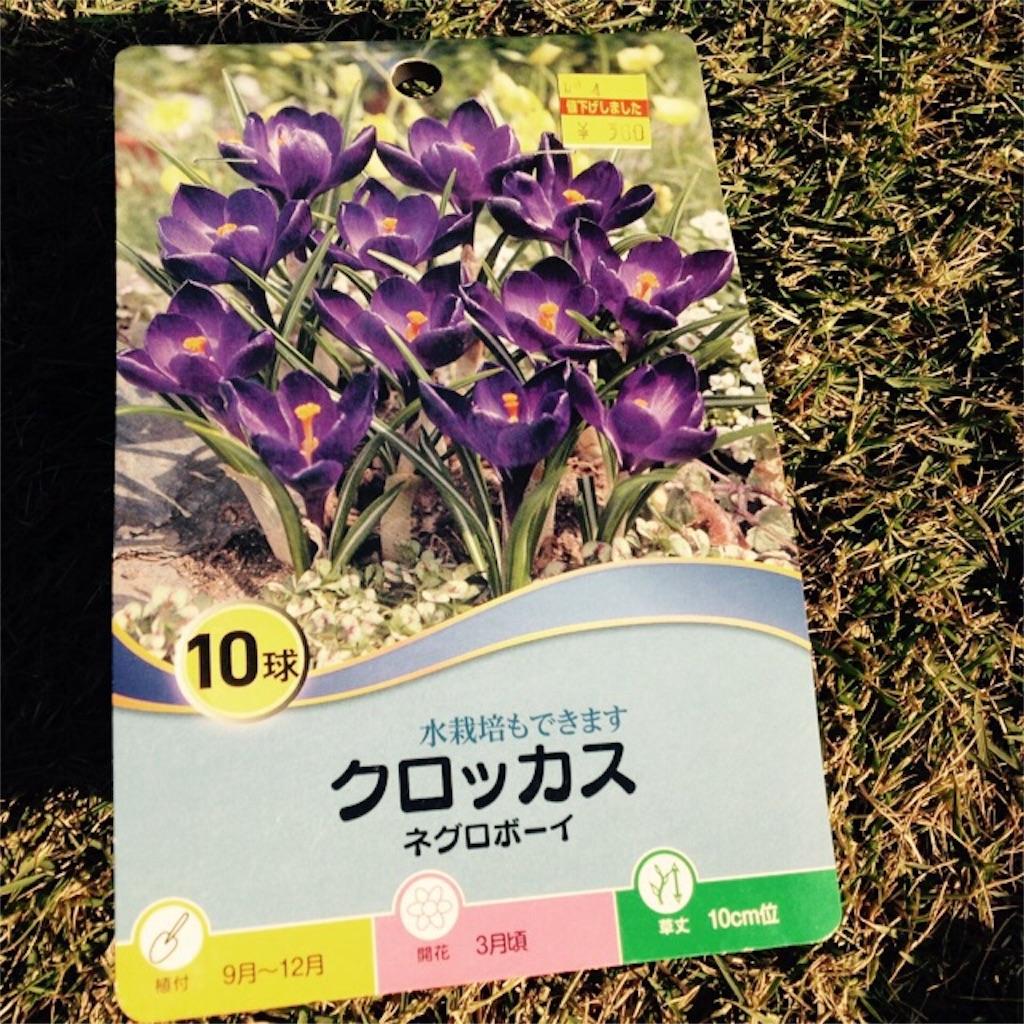 f:id:m-garden-life:20161129150958j:image