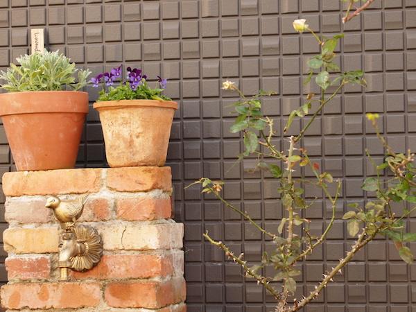 f:id:m-garden-life:20161219154129j:plain