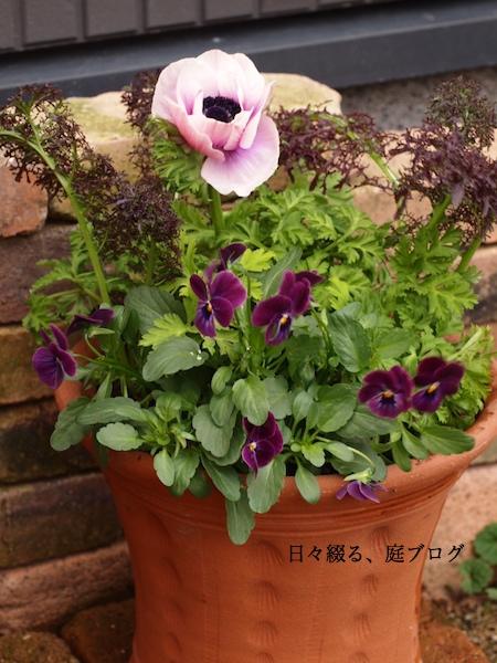f:id:m-garden-life:20170105164050j:plain