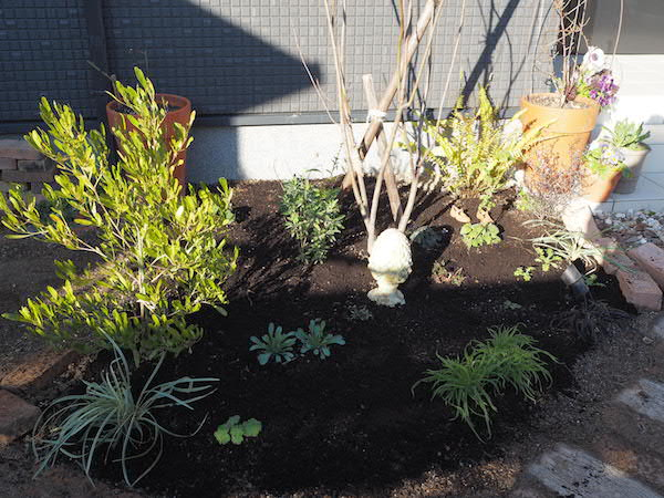 f:id:m-garden-life:20170125103720j:plain