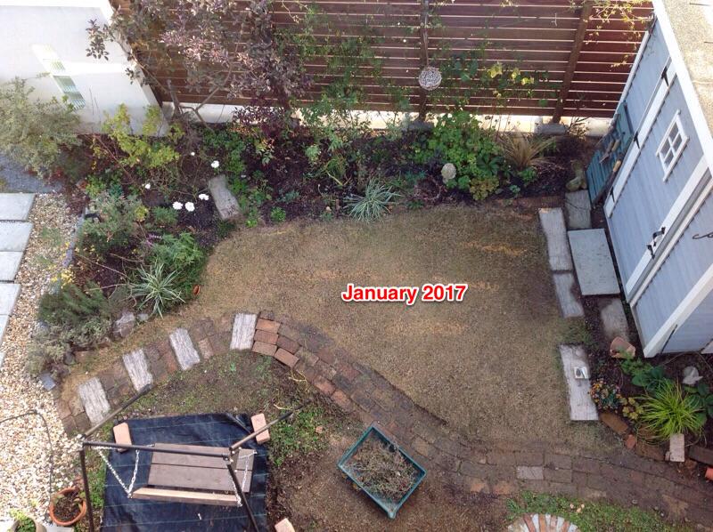 f:id:m-garden-life:20170218173521p:plain