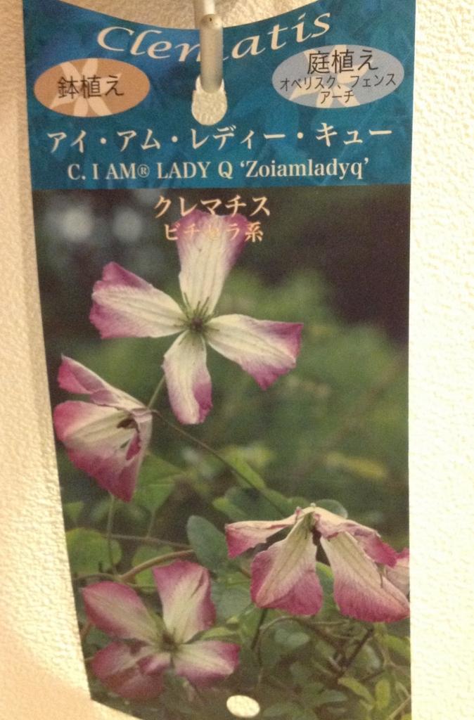 f:id:m-garden-life:20170330061416j:plain