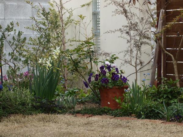 f:id:m-garden-life:20170403162123j:plain