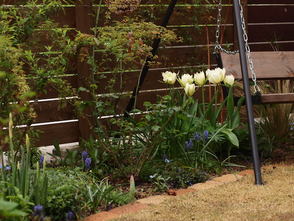 f:id:m-garden-life:20170407161917j:plain