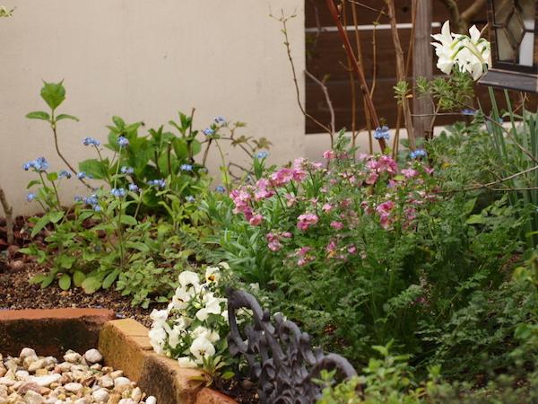 f:id:m-garden-life:20170407162827j:plain