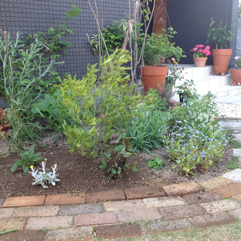 f:id:m-garden-life:20170419145937j:plain