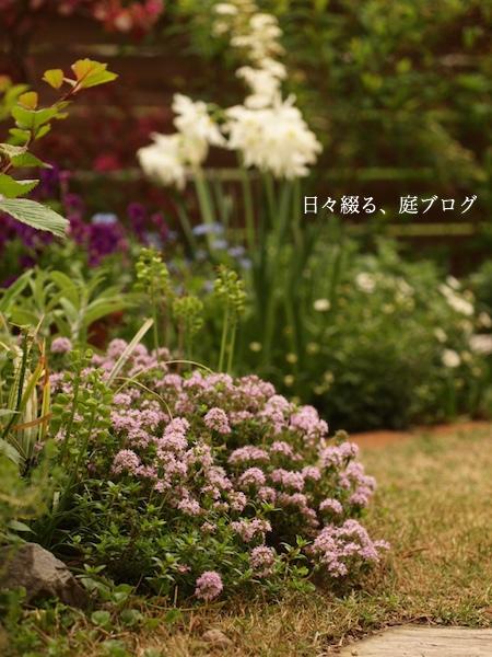 f:id:m-garden-life:20170420165026j:plain