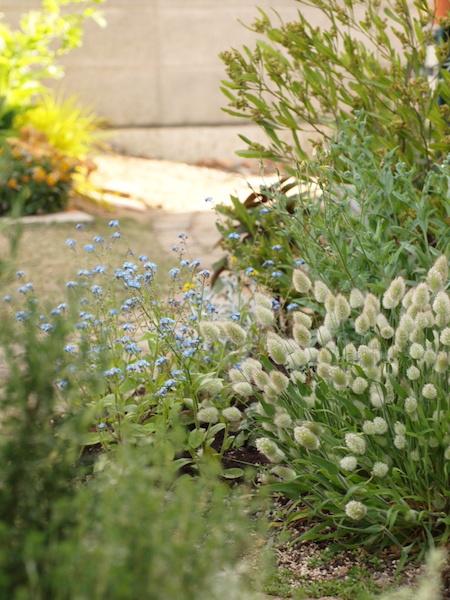 f:id:m-garden-life:20170424162903j:plain