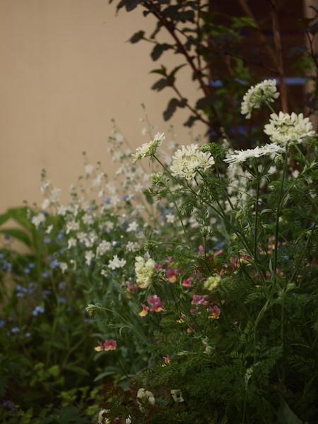 f:id:m-garden-life:20170430204020j:plain