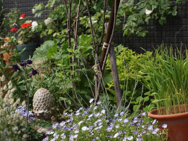 f:id:m-garden-life:20170504125854j:plain