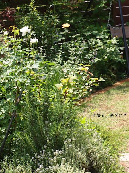 f:id:m-garden-life:20170511113925j:plain