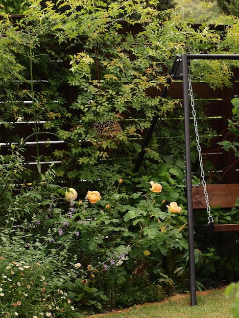 f:id:m-garden-life:20170513095917j:plain