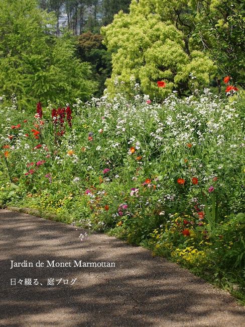 f:id:m-garden-life:20170515193610j:plain