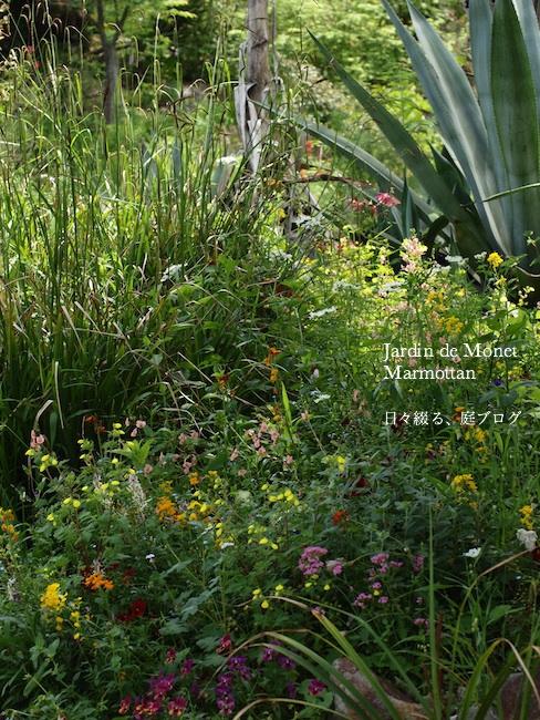 f:id:m-garden-life:20170515200202j:plain